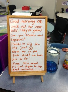 A Good Morning Greetings board used in Rachel's classroom.